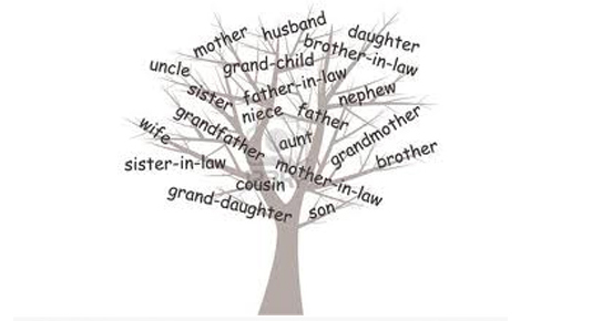 Family Ulster | Genealogy Services - Northern Ireland ...